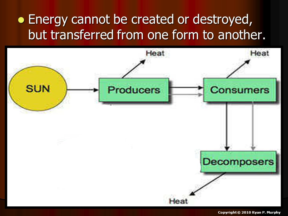 Energy cannot be created or destroyed, but transferred from one form to another.