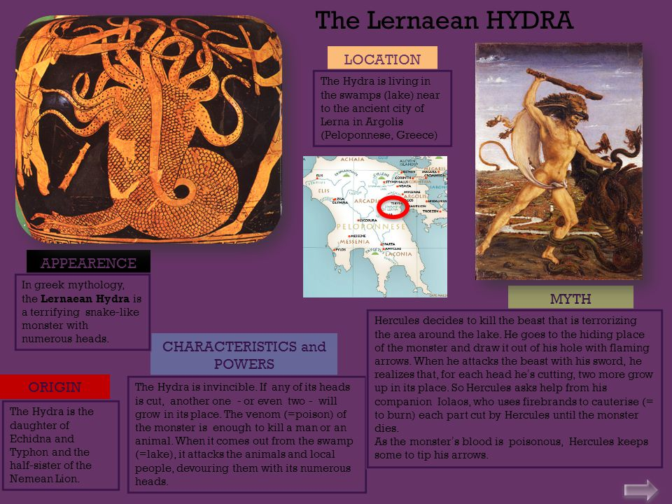The Lernaean HYDRA APPEARENCE CHARACTERISTICS and POWERS MYTH In greek mythology, the Lernaean Hydra is a terrifying snake-like monster with numerous heads.