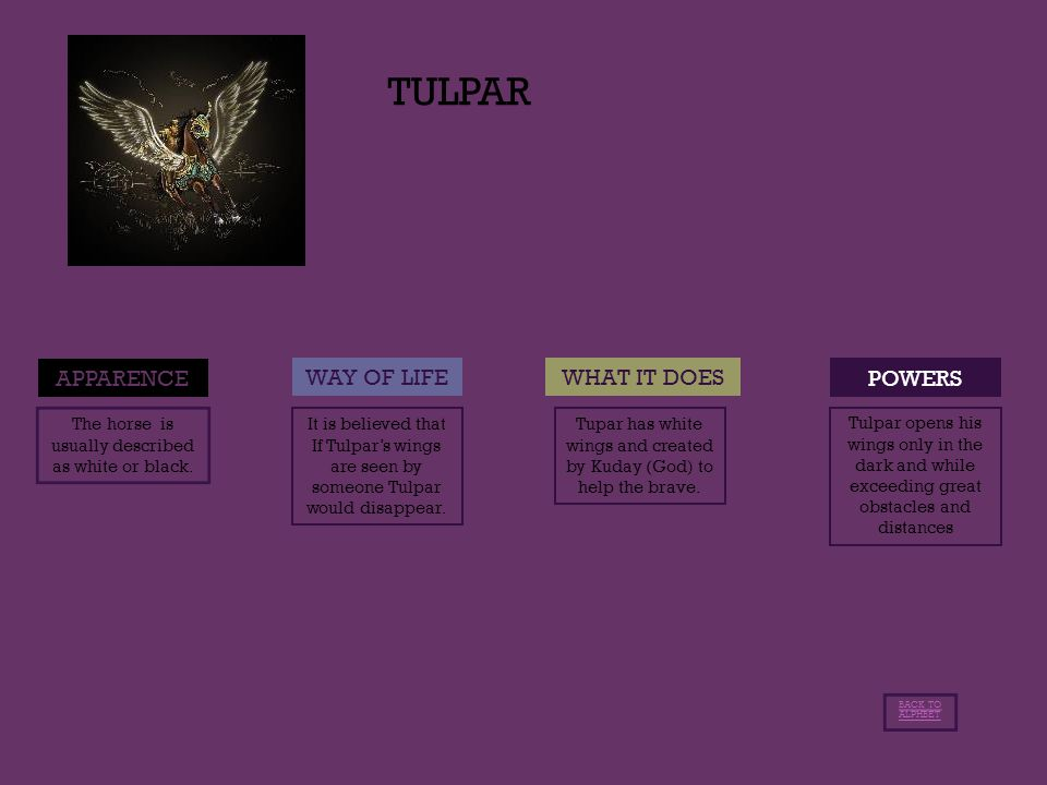 TULPAR POWERS APPARENCE WAY OF LIFEWHAT IT DOES The horse is usually described as white or black.