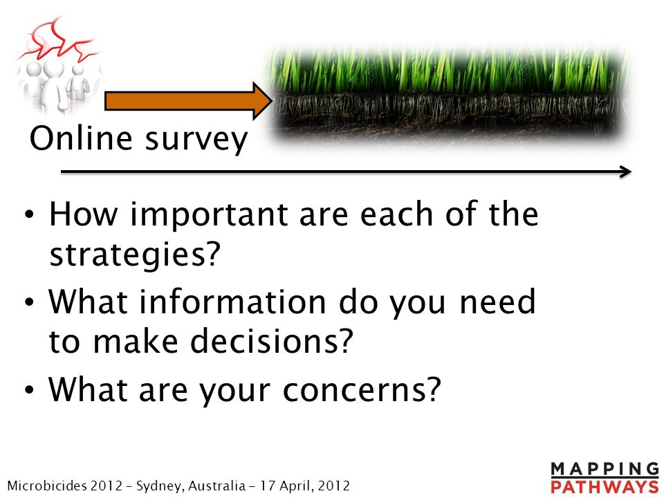 Online survey How important are each of the strategies? What information do you need to make decisions? What are your concerns? Microbicides 2012 – Sy