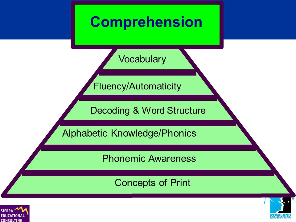 Concepts of Print Phonemic Awareness Alphabetic Knowledge/Phonics Decoding & Word Structure Vocabulary Fluency/Automaticity Comprehension