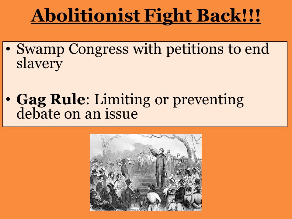Abolitionist Fight Back!!.