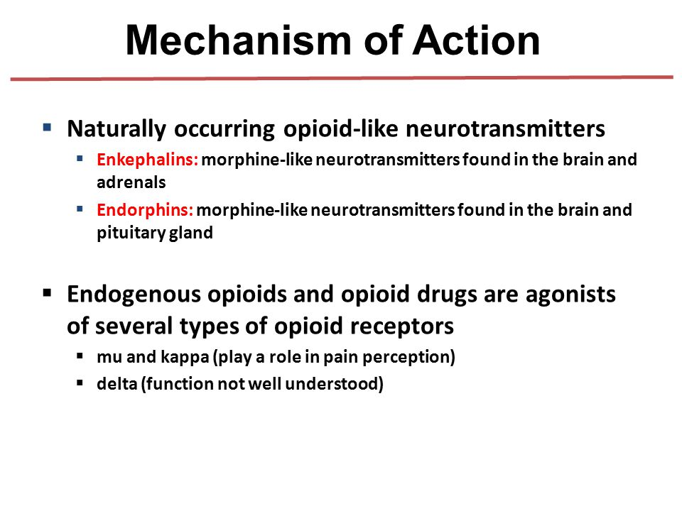  Naturally occurring opioid-like neurotransmitters  Enkephalins: morphine-like neurotransmitters found in the brain and adrenals  Endorphins: morph