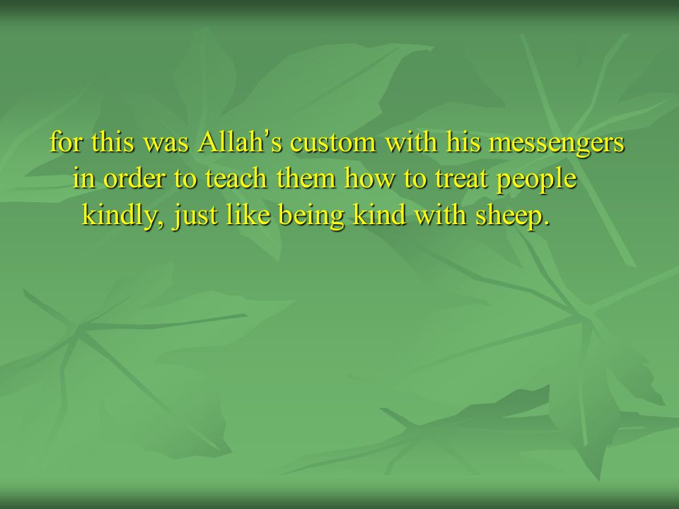for this was Allah ' s custom with his messengers in order to teach them how to treat people kindly, just like being kind with sheep.