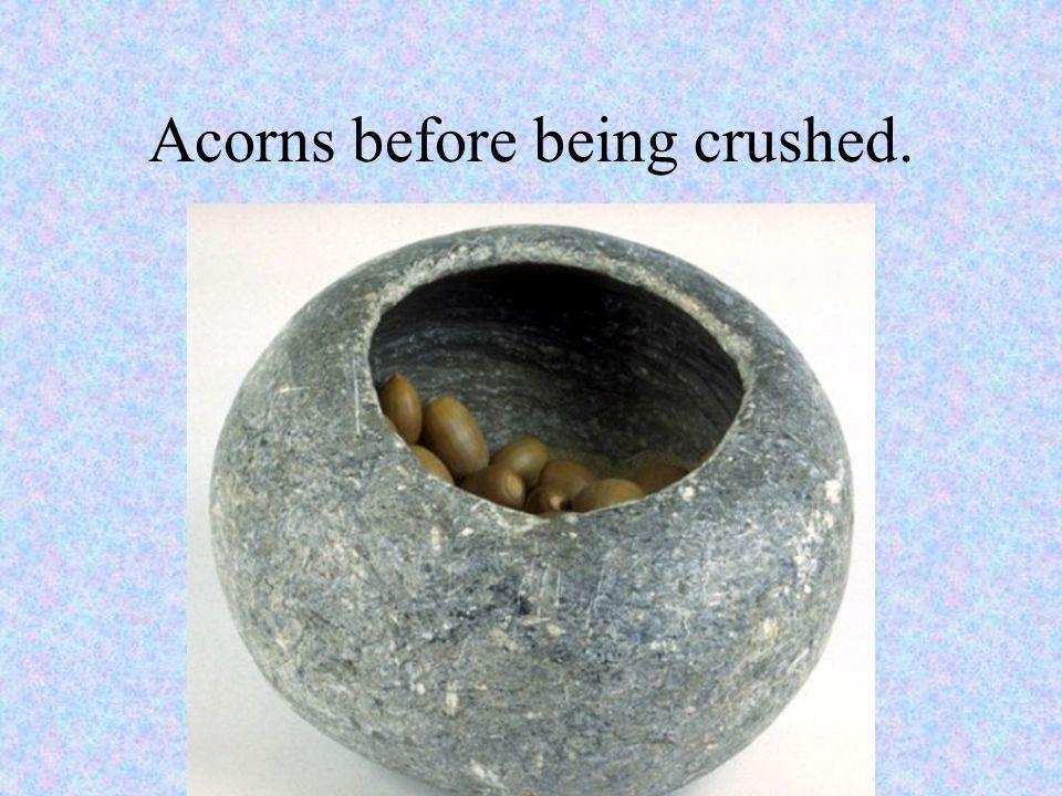 Rocks used for crushing acorns.
