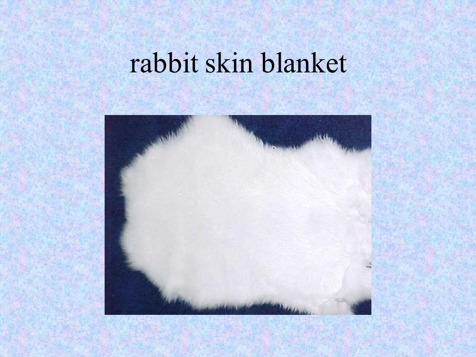 rabbit skin blanket