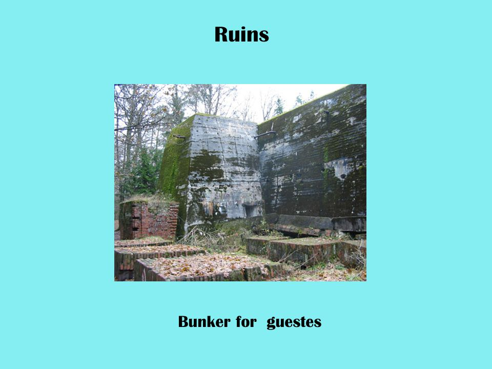 Bunker for guestes Ruins