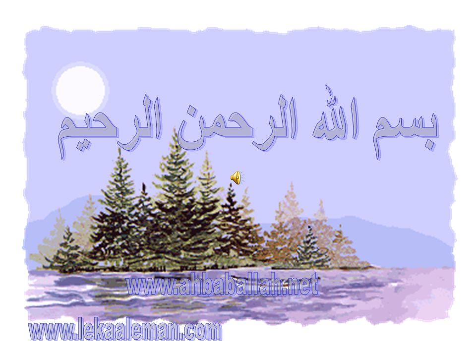 أنت نمت !! طيب تصبح على خير بأه..سلام تقبل الله منا ومنكم صالح الأعمال