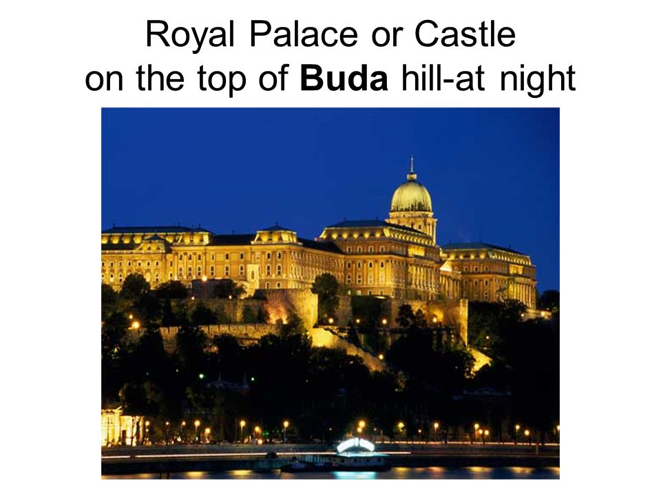 Royal Palace or Castle on the top of Buda hill-at night