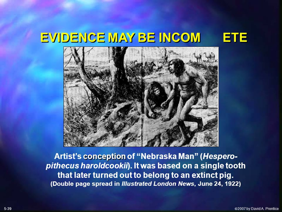 " 2007 by David A. Prentice EVIDENCE MAY BE INCOM ETE conception Artist's conception of ""Nebraska Man"" (Hespero- pithecus haroldcookii). It was based"