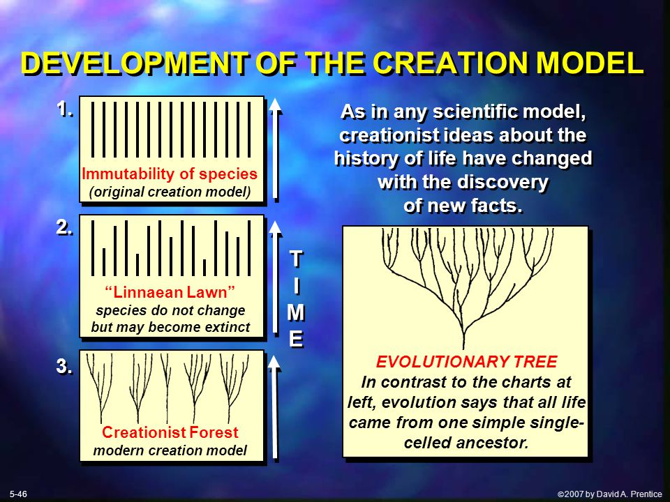  2007 by David A. Prentice DEVELOPMENT OF THE CREATION MODEL As in any scientific model, creationist ideas about the history of life have changed wi
