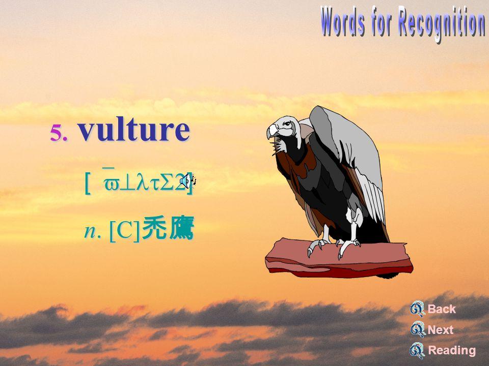 5. vulture [`v^ltS2] [`v^ltS2] n. [C] 禿鷹 n. [C] 禿鷹 Reading Back Next