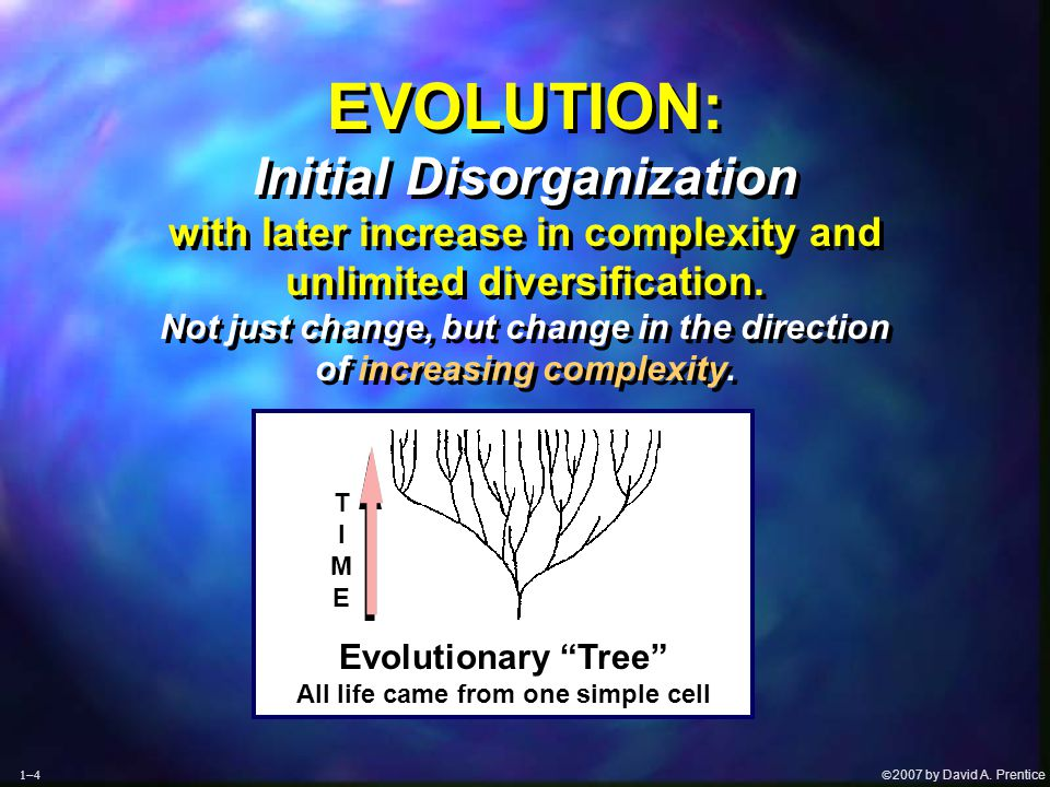  2007 by David A. Prentice  T I M E EVOLUTION: Initial Disorganization with later increase in complexity and unlimited diversification. Not just