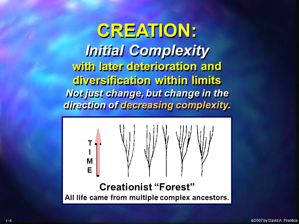 """ 2007 by David A. Prentice  TIMETIME Creationist """"Forest"""" All life came from multiple complex ancestors. CREATION: Initial Complexity with later"""