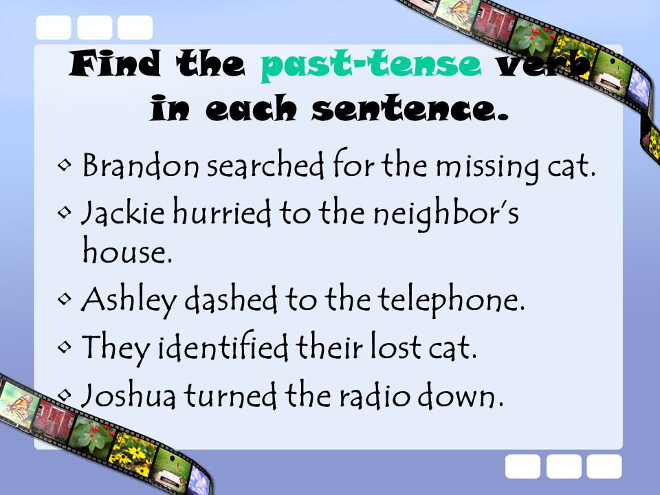 Find the past-tense verb in each sentence. Brandon searched for the missing cat.