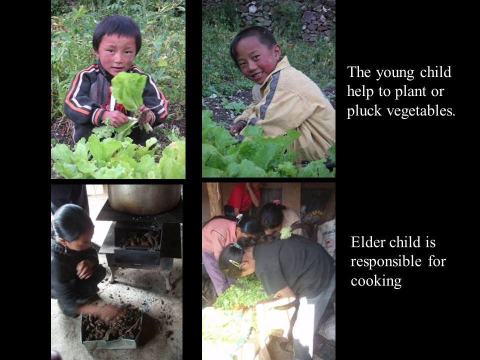 The young child help to plant or pluck vegetables. Elder child is responsible for cooking