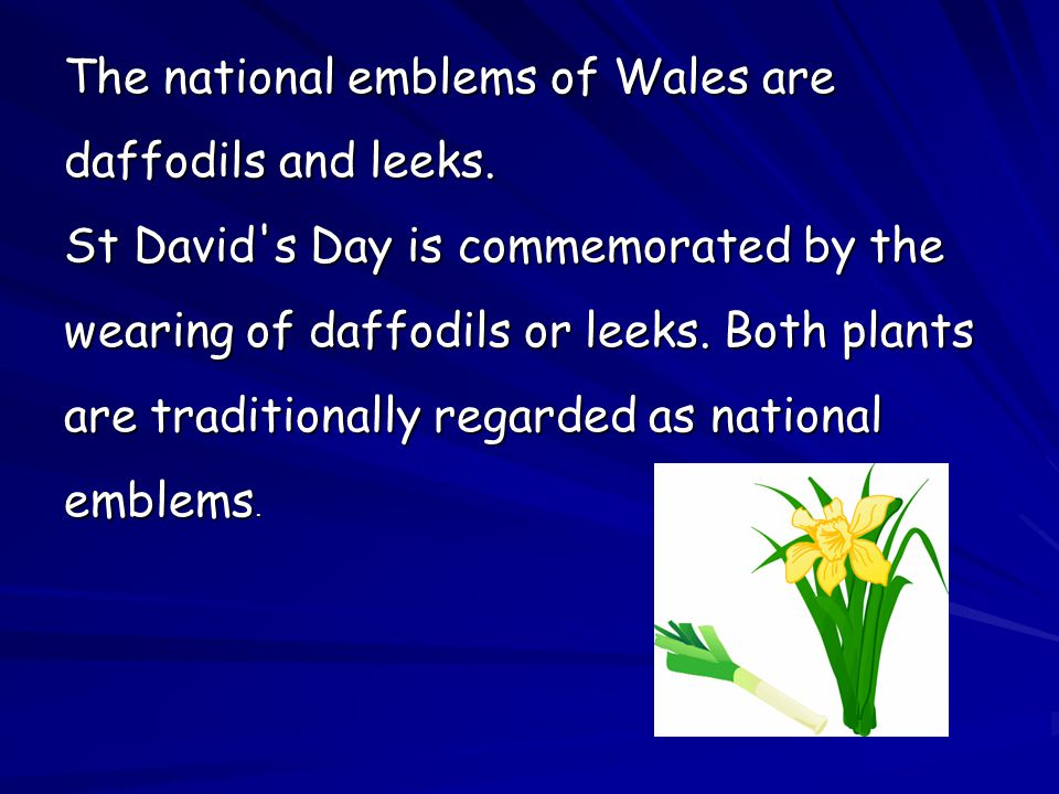 The national emblems of Wales are daffodils and leeks. St David's Day is commemorated by the wearing of daffodils or leeks. Both plants are traditiona