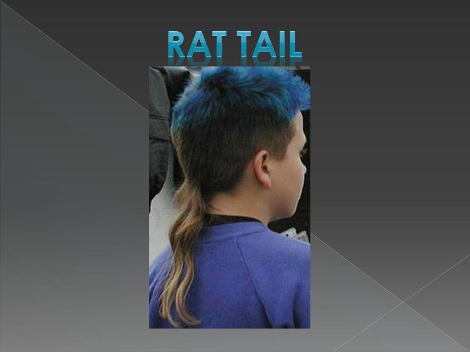  Rat Tail  Hi-top Fade  Duck tail  Dreadlocks  Pompadour  The Pixie  Beehive  The Shag  Afro  Corn Rows  Bouffant  Devil Lock  Absurd Inv