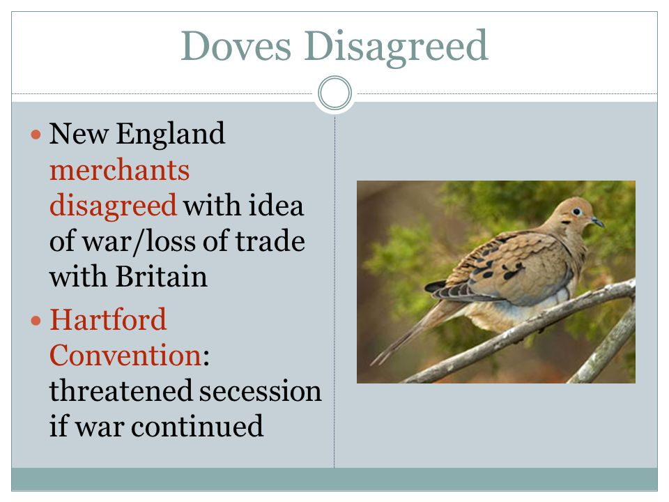 Doves Disagreed New England merchants disagreed with idea of war/loss of trade with Britain Hartford Convention: threatened secession if war continued