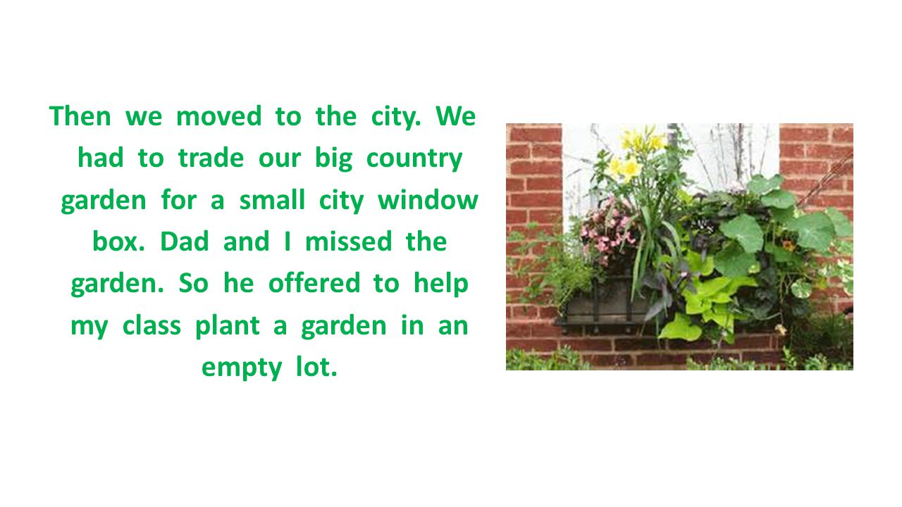 Then we moved to the city. We had to trade our big country garden for a small city window box.