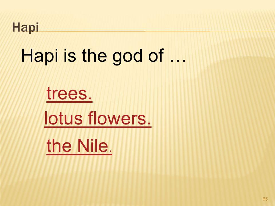 Hapi 55 Hapi is the god of … trees. lotus flowers. the Nile.