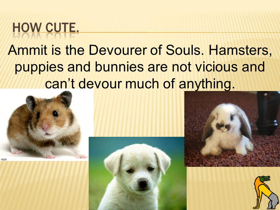 62 Ammit is the Devourer of Souls.