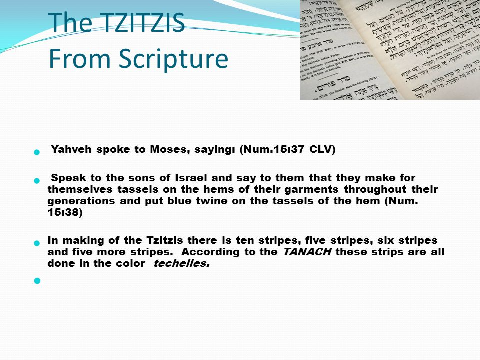 The TZITZIS From Scripture Yahveh spoke to Moses, saying: (Num.15:37 CLV) Speak to the sons of Israel and say to them that they make for themselves ta