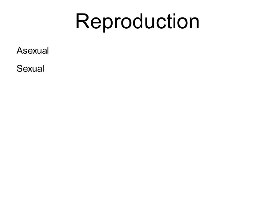 Reproduction Asexual Sexual