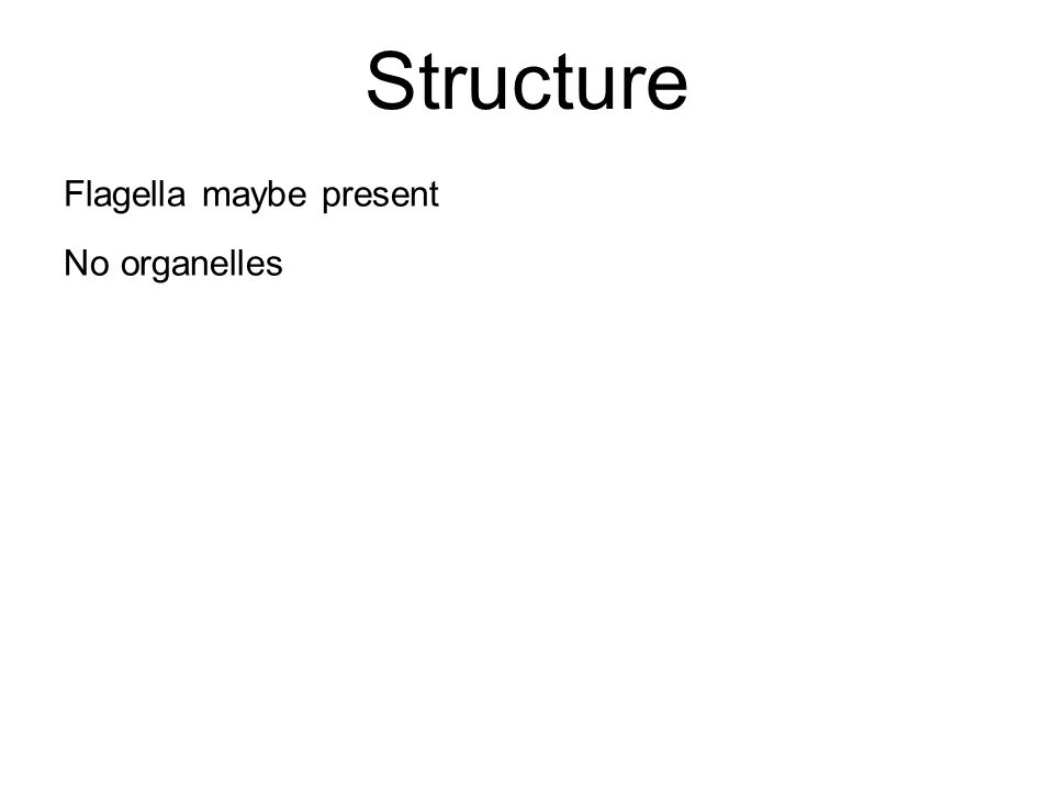 Structure Flagella maybe present No organelles