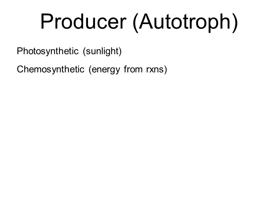 Photosynthetic (sunlight) Chemosynthetic (energy from rxns)
