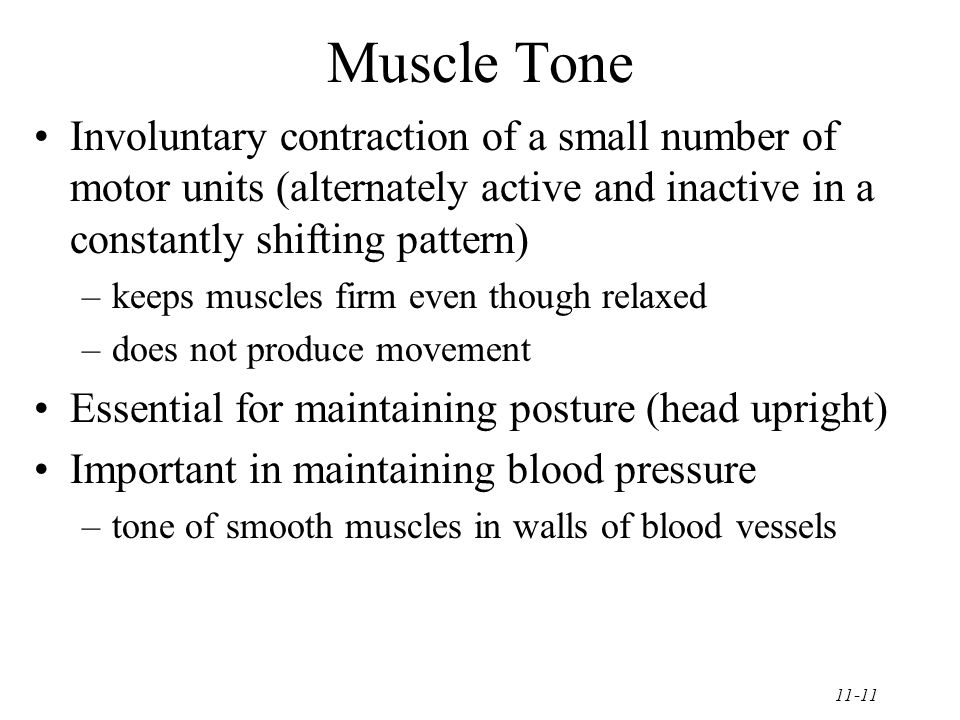 11-11 Muscle Tone Involuntary contraction of a small number of motor units (alternately active and inactive in a constantly shifting pattern) –keeps muscles firm even though relaxed –does not produce movement Essential for maintaining posture (head upright) Important in maintaining blood pressure –tone of smooth muscles in walls of blood vessels