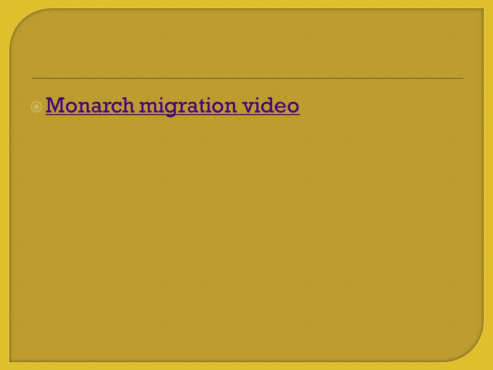  Monarch migration video Monarch migration video