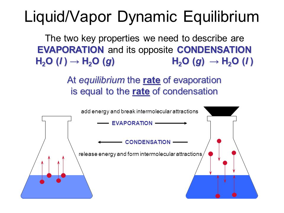 Evaporation H 2 O(g) molecules (water vapor) H 2 O(l) molecules A dynamic equilibrium can only be achieved in a closed container