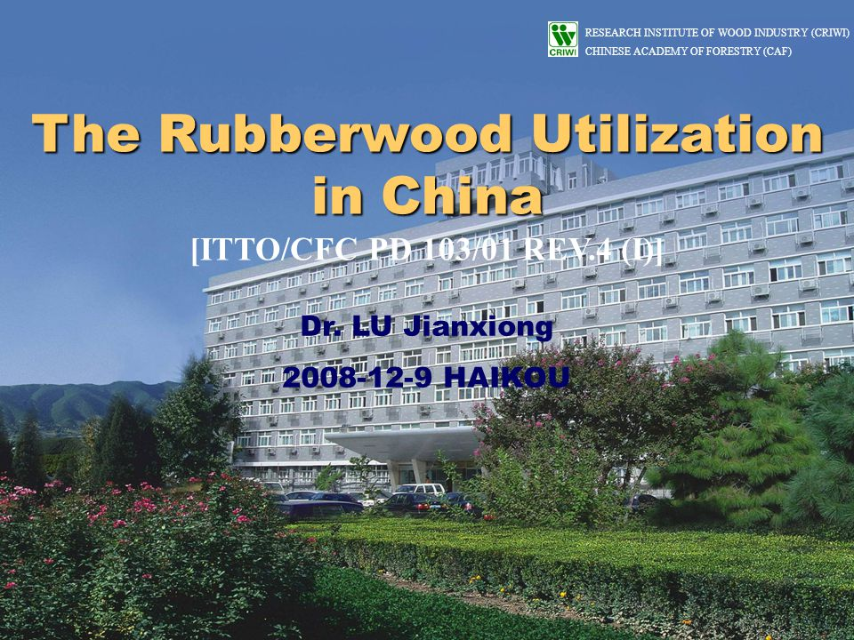 RESEARCH INSTITUTE OF WOOD INDUSTRY (CRIWI) CHINESE ACADEMY OF FORESTRY (CAF) OUTLINE 1.The rubber tree planting and rubberwood resources 2.The influence and status of wood supply 3.The status of rubberwood utilization 4.Strategies for the promotion of rubberwood industry development