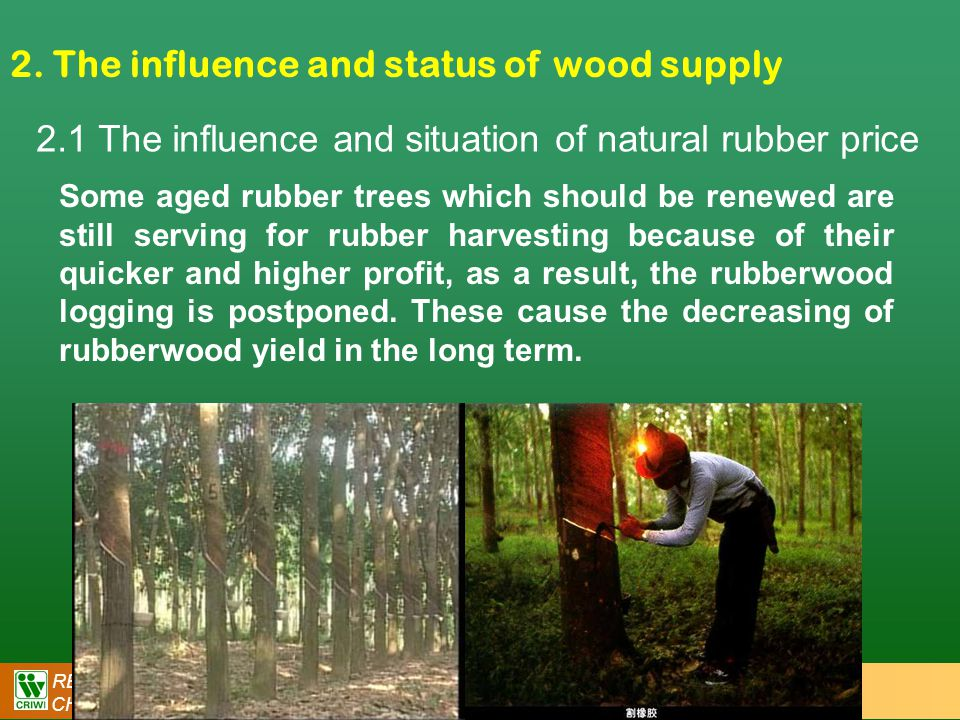 RESEARCH INSTITUTE OF WOOD INDUSTRY (CRIWI) CHINESE ACADEMY OF FORESTRY (CAF) 2. The influence and status of wood supply 2.1 The influence and situati