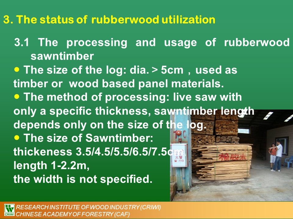 RESEARCH INSTITUTE OF WOOD INDUSTRY (CRIWI) CHINESE ACADEMY OF FORESTRY (CAF) 3. The status of rubberwood utilization 3.1 The processing and usage of