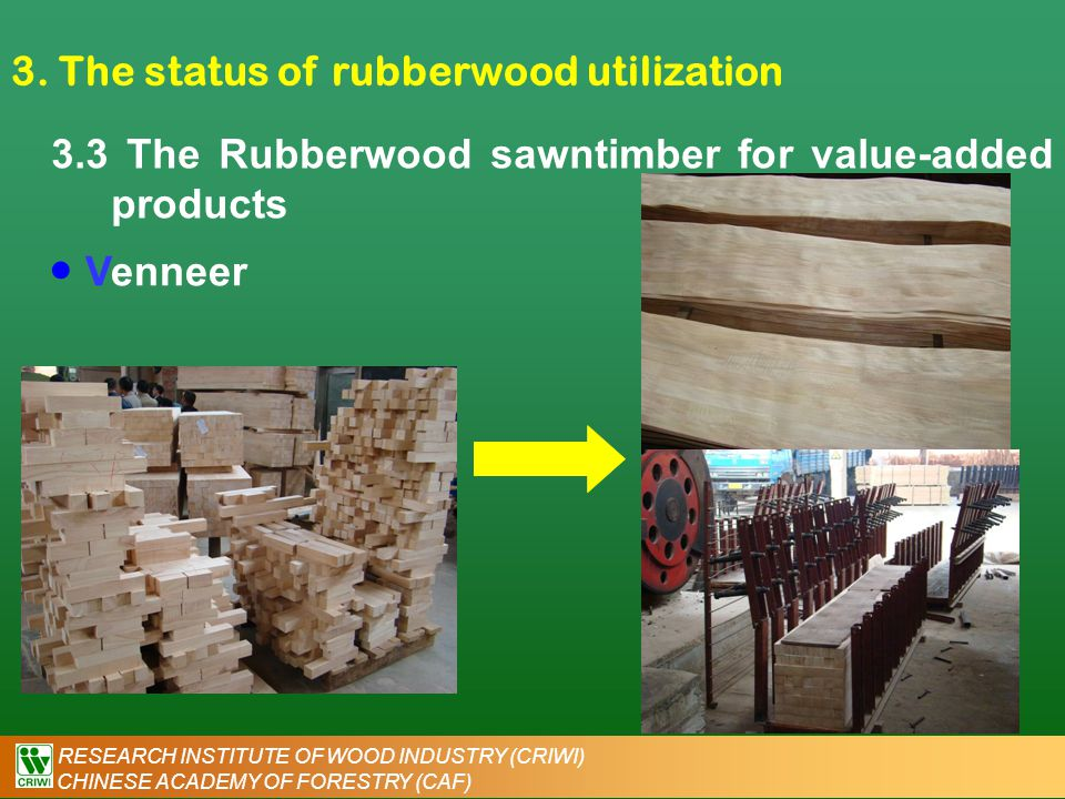 RESEARCH INSTITUTE OF WOOD INDUSTRY (CRIWI) CHINESE ACADEMY OF FORESTRY (CAF) 3. The status of rubberwood utilization 3.3 The Rubberwood sawntimber fo