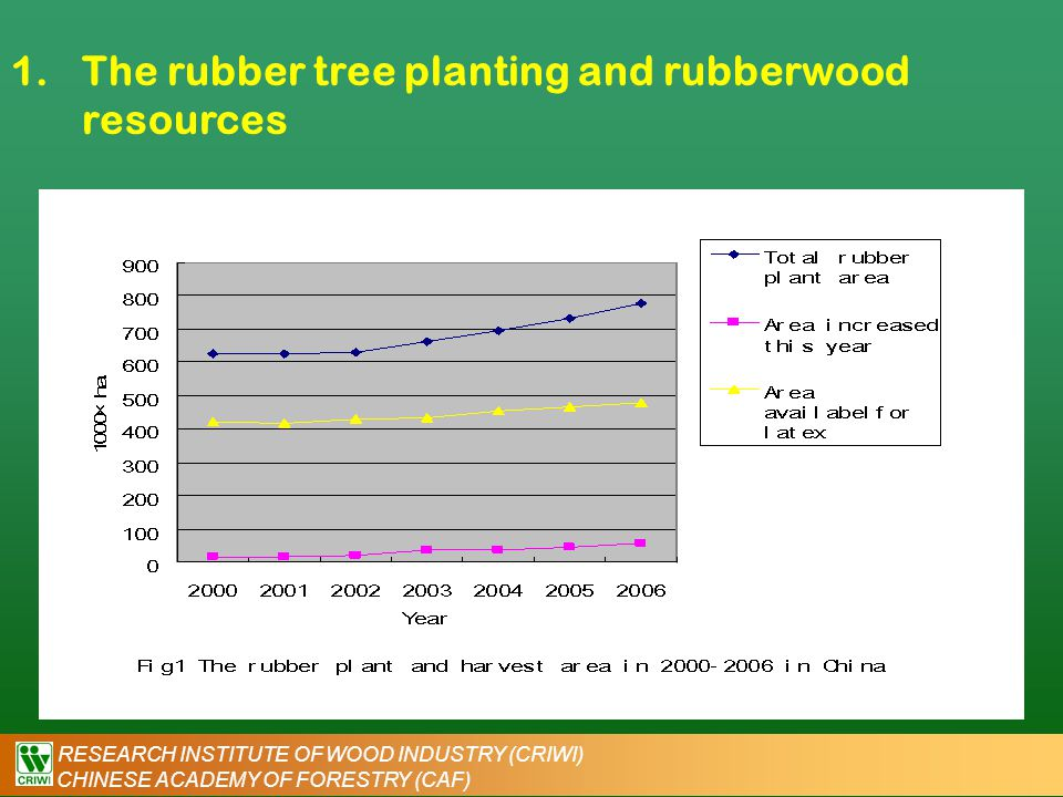 RESEARCH INSTITUTE OF WOOD INDUSTRY (CRIWI) CHINESE ACADEMY OF FORESTRY (CAF) 1.The rubber tree planting and rubberwood resources