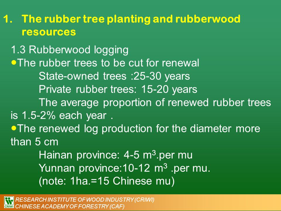 RESEARCH INSTITUTE OF WOOD INDUSTRY (CRIWI) CHINESE ACADEMY OF FORESTRY (CAF) 1.The rubber tree planting and rubberwood resources ● The total annual rubberwood yield in China : 800,000 m 3 -1,900,000 m 3 (Based on a 20 years of renewal period) ● Annual rubberwood yield: 800,000 m 3 in recent years Hainan rubberwood Yunnan rubberwood
