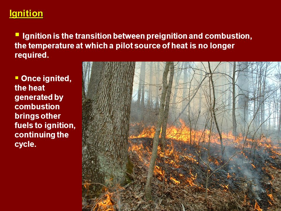 Ignition  Ignition is the transition between preignition and combustion, the temperature at which a pilot source of heat is no longer required.