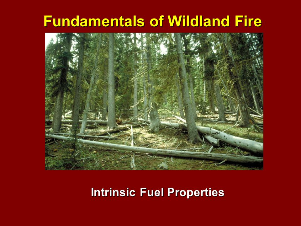 Intrinsic Fuel Properties Fundamentals of Wildland Fire