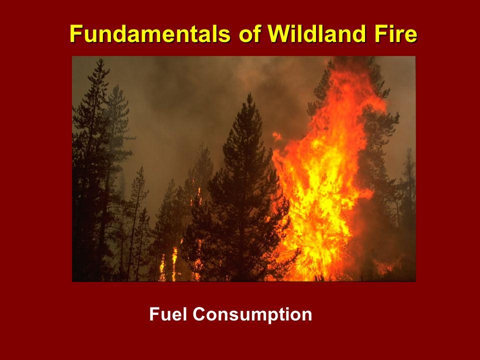 Fundamentals of Wildland Fire Fuel Consumption