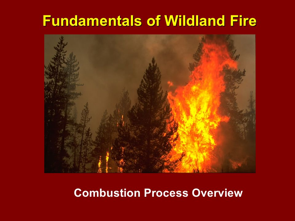The maximum temperature that can be produced by the burning of gases generated from wildland fuels is believed to be between 3500 and 4000 o F.