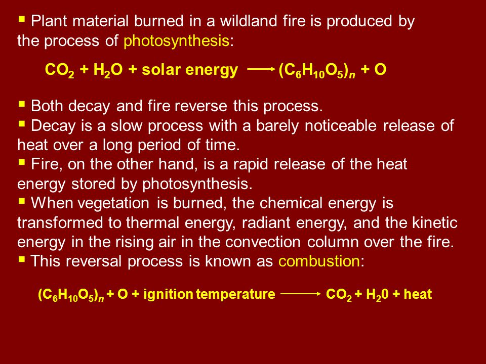  Plant material burned in a wildland fire is produced by the process of photosynthesis: CO 2 + H 2 O + solar energy (C 6 H 10 O 5 ) n + O  Both decay and fire reverse this process.