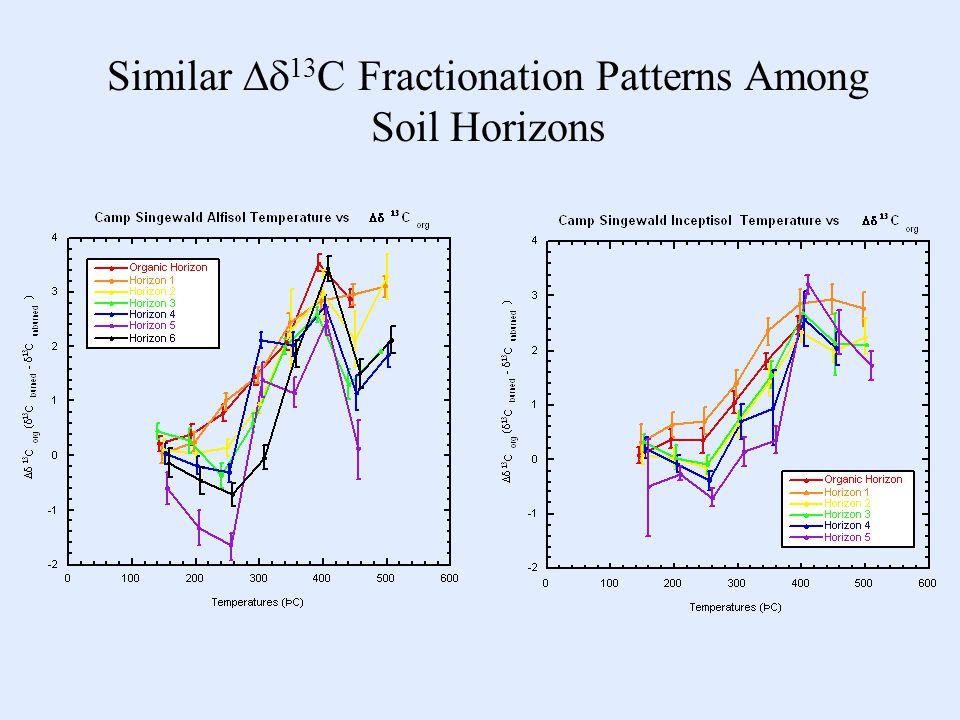 Similar  13 C Fractionation Patterns Among Soil Horizons