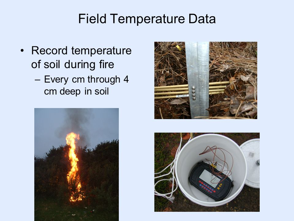 Field Temperature Data Record temperature of soil during fire –Every cm through 4 cm deep in soil