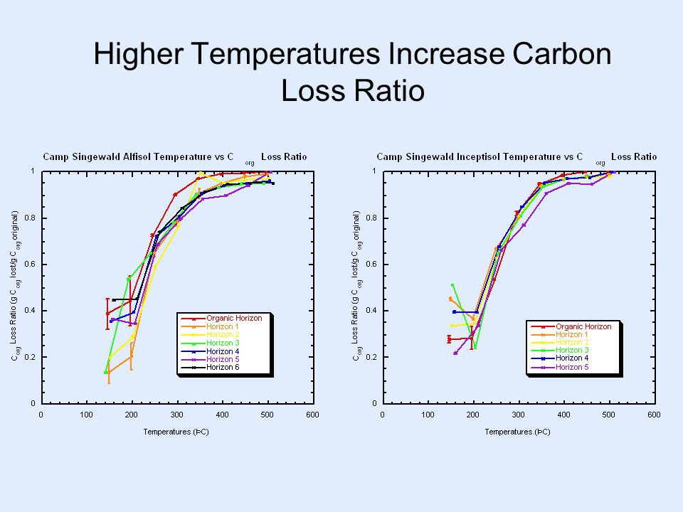 Higher Temperatures Increase Carbon Loss Ratio