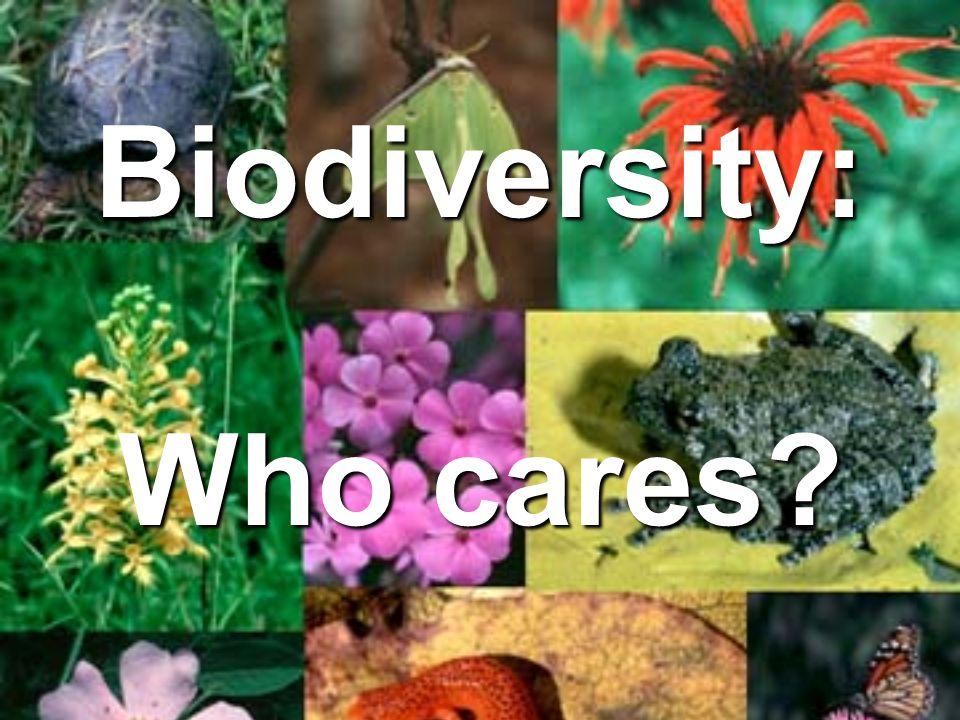 Biodiversity: Who cares