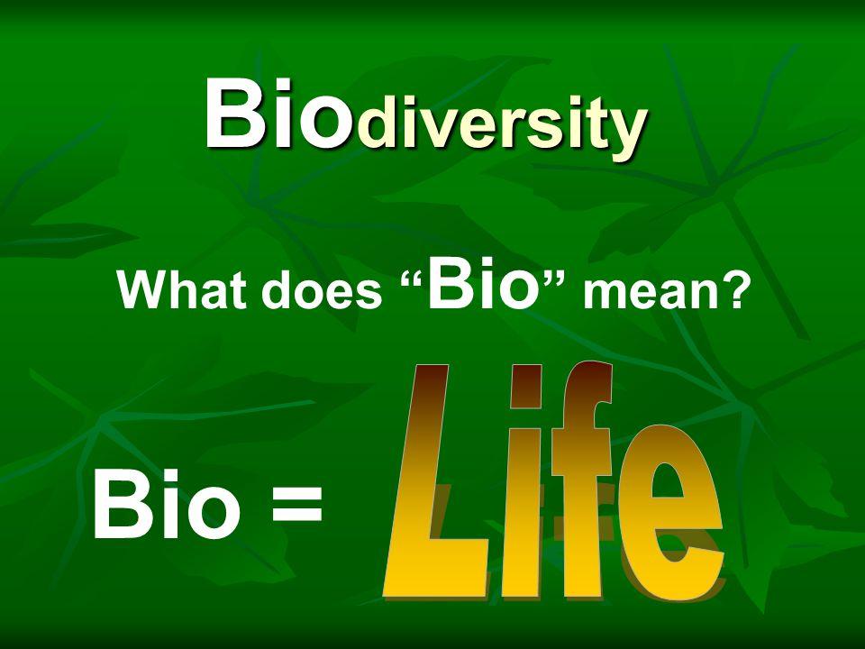 """Bio = Bio diversity What does """" Bio """" mean?"""