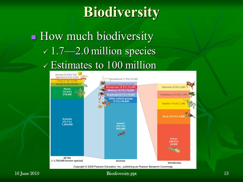 Biodiversity How much biodiversity How much biodiversity 1.7—2.0 million species 1.7—2.0 million species Estimates to 100 million Estimates to 100 million 16 June 2010Biodiversity.ppt13
